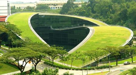 エコな緑の屋根