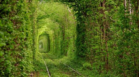 恋人たちのトンネル