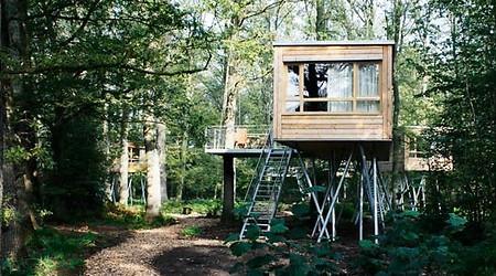 自然を満喫するならドイツのツリーハウスホテルへ