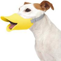 犬の世界にもアヒル口のブームが到来!?