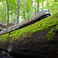 カナダの大自然とコラボした鉄道模型がステキ
