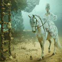 快適な貴族のロココ的海底生活