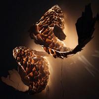 フランク・ゲーリーの水魚の交わりを表した照明